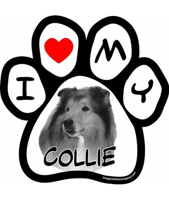 Imagine This 5-1/2-Inch by 5-1/2-Inch Car Magnet Picture Paw, Collie