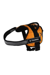 "Dean & Tyler Works ""In Training"" Pet Harness, XX-Small, Fits Girth Size: 18 to 21-Inch, Orange/Black"