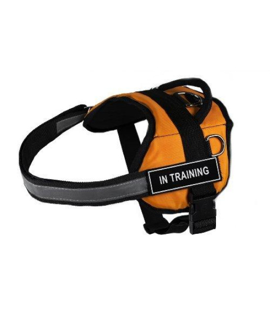 "Dean & Tyler Works ""In Training"" Pet Harness, X-Small, Fits Girth Size: 21 to 26-Inch, Orange/Black"