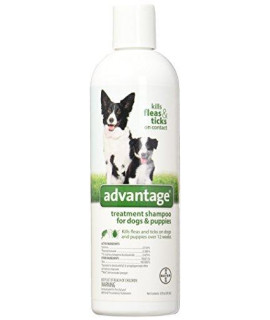 Advantage ZX5690 12 Treatment Shampoo Dog, 12-Ounce