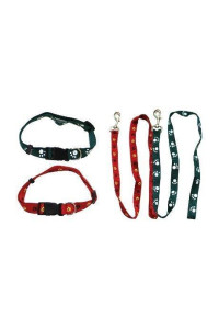Iconic Pet Paw Print Adjustable Collar with Leash, Medium, Red