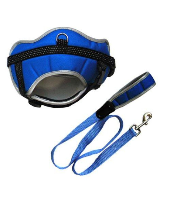 Iconic Pet Reflective Adjustable Harness with Leash, X-Small, Blue