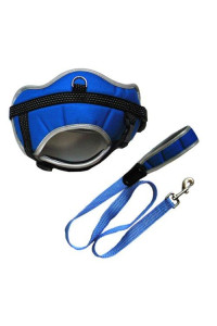 Iconic Pet Reflective Adjustable Harness with Leash, Small, Blue