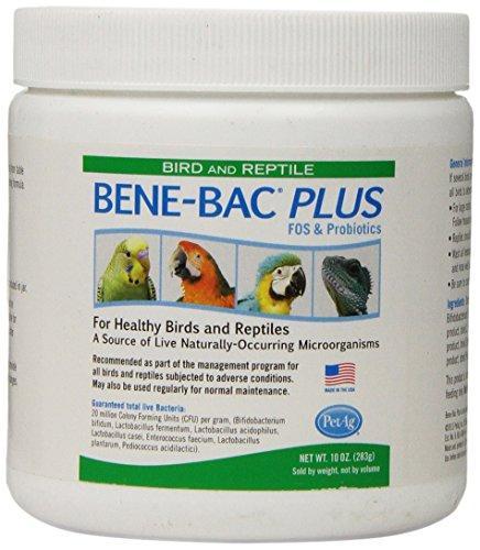 Bene-Bac Bird & Reptile Powder, 10oz
