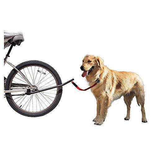 Sunlite Bicycle Dog Leash
