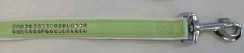 East Side Collection Gemstone Lead, 6-Feet, Mint Green