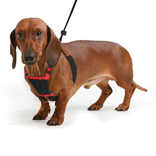 YUP! Nylon Non Pulling Dog Harness, Medium, Red
