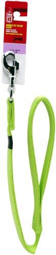 Dogit Nylon Single Ply Dog Leash with Silver Plate Bolt Snap, X-Large, 1-Inch, Green