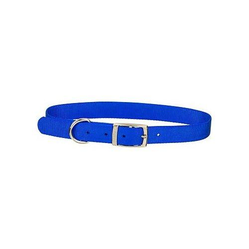 Dogit Nylon Single Ply Dog Collar with Buckle, X-Large, 20-Inch, Blue