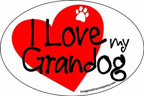 Imagine This 4-Inch by 6-Inch Car Magnet Heart Oval, Grandog