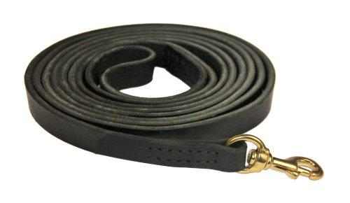 Dean and Tyler Stitched Track Dog Leash with Solid Brass Hardware and Handle, 13-1/2-Feet by 3/4-Inch, Black