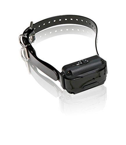 Dogtra EF3000 Dog Collar, Gold
