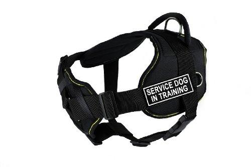 Dean & Tyler Black with Yellow Trim Fun Dog Harness with Padded Chest Piece, Service Dog In Training, Medium, Fits Girth Size 28-Inch to 34-Inch