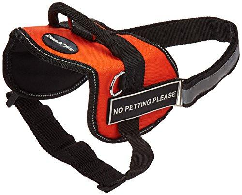 Dean & Tyler Works No Petting Please Pet Harness, Medium, Fits Girth Size: 28 to 38-Inch, Orange/Black