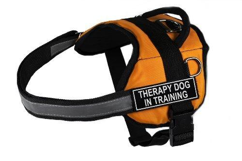 Dean & Tyler Works Therapy Dog in Training Pet Harness, Medium, Fits Girth Size: 28 to 38-Inch, Orange/Black