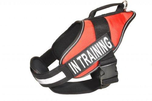 Dogline Alpha Nylon Service Vest Harness with Removable Chestplate and In Training Velcro Patches, X-Large, Chest Size 36 to 46-Inch, Red