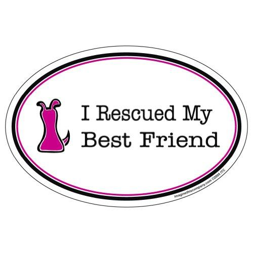 Imagine This Oval Magnet, I Rescued My Best Friend, Pink