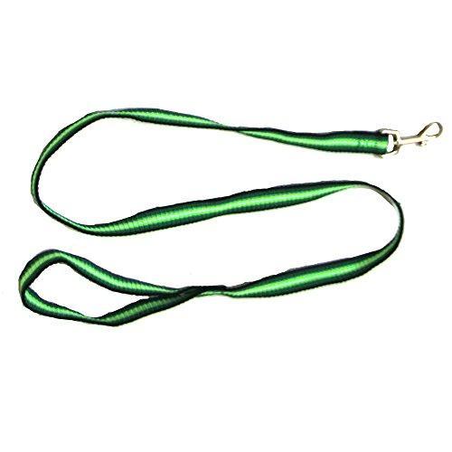 Iconic Pet Rainbow Leash, Small, Green