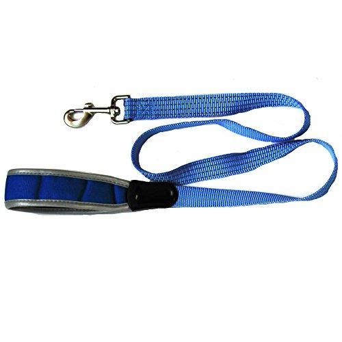 Iconic Pet Reflective Nylon Leash, Large, Blue