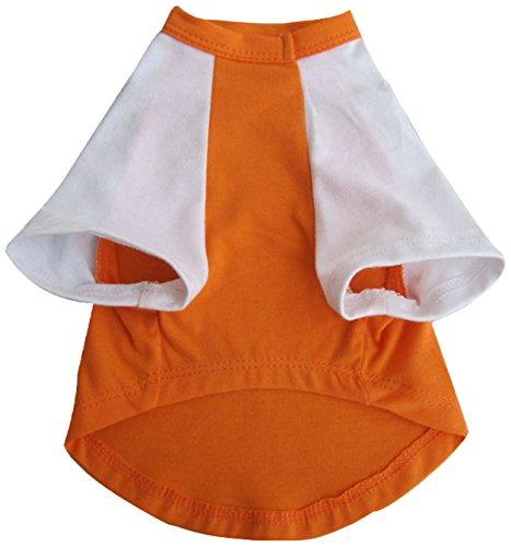 Iconic Pet Pretty Pet Top, XX-Small, Orange and White