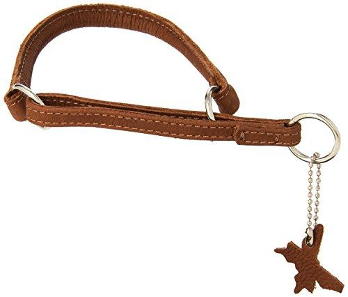 Dogline 1/3-Inch Wide Soft Rolled Genuine Leather Martingale Collar, 14-Inch, Brown
