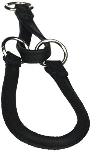 Dogline 1/3-Inch Wide Soft Rolled Genuine Leather Martingale Collar, 16-Inch, Black