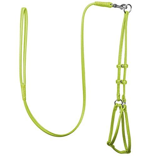 Dogline Soft Round/Rolled Genuine Leather Step-In Harness with 15 to 20-Inch Chest and 36-Inch Leash, Green