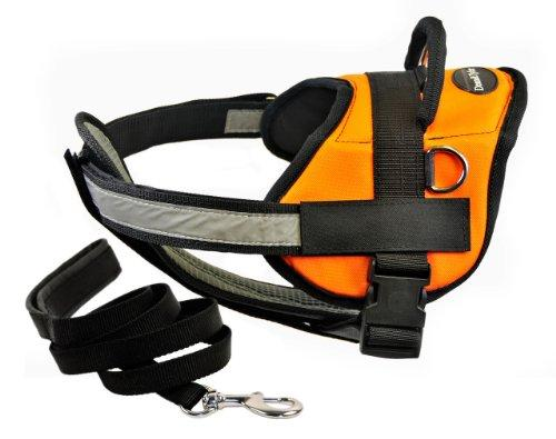 Dean & Tylers DT Works Orange Harness with Chest Padding, Medium, and 6 ft Padded Puppy Leash.