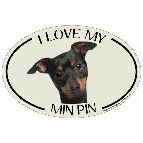 Imagine This Oval Magnet, I Love My Min Pin