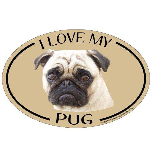 Imagine This Oval Magnet, I Love My Pug