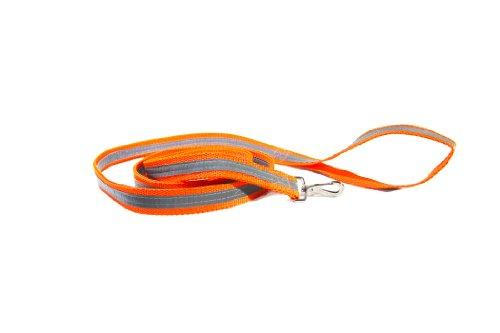 Dog Not Gone Visibility Products Dual Sided Reflective Leash, 6-Feet