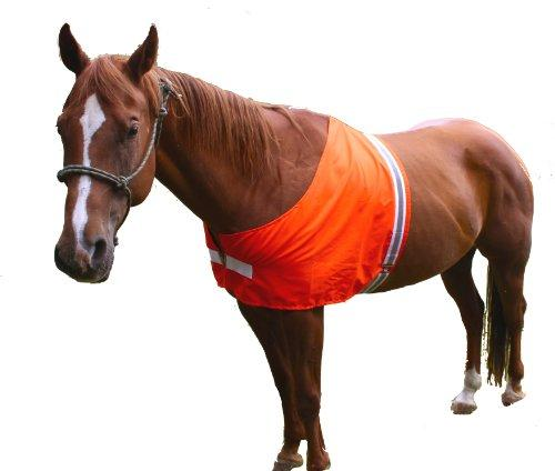 Dog Not Gone Visibility Products Safety Horse Vest, Large/X-Large