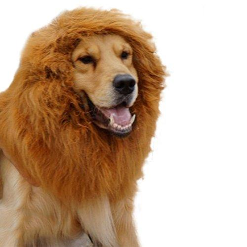 Broadfashion Large Pet Costume Lion Mane Wig for Dog Christmas Halloween Clothes Festival Fancy Dress up