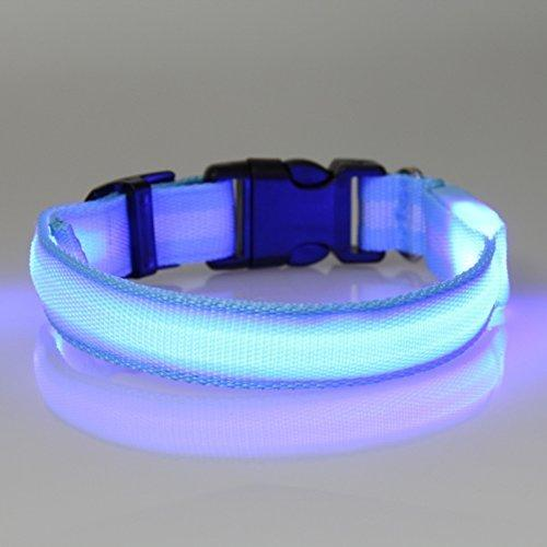 Tzou Dog Safety Collar, Blue, Large