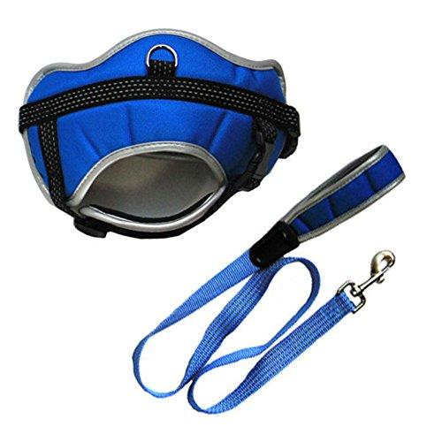 Iconic Pet Reflective Adjustable Harness with Leash, X-Large, Blue