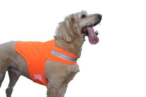 Dog Not Gone No Fly Zone Safety Vest for Dogs, Medium, Orange