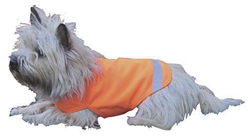 Dog Not Gone No Fly Zone Mini Safety Pet Vest, Medium, Orange