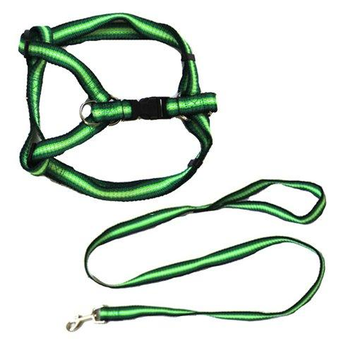 Iconic Pet Rainbow Adjustable Harness with Leash, Green, X-Small