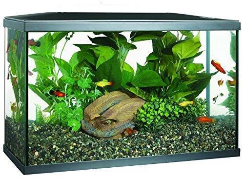 Marina LED Aquarium Kit, 10 Gallon