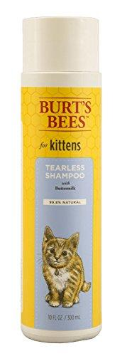 Burts Bees Tearless Kitten Shampoo with Buttermilk