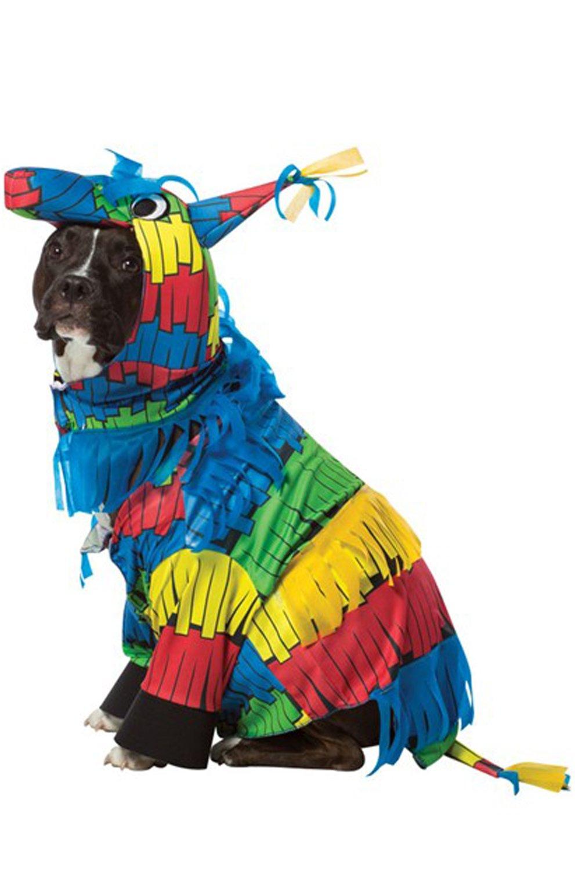 Rasta Imposta Pinata Dog Costume, Medium