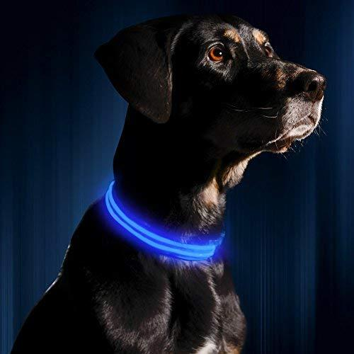 Led Dog Collar - Usb Rechargeable - Available In 6 Colors $ 6 Sizes - Makes Your Dog Visible, Safe $ Seen