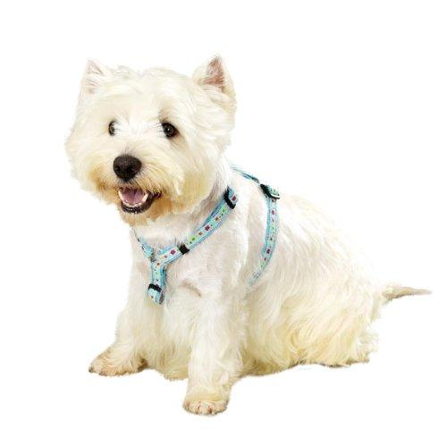 East Side Collection Woven Nylon Fashion Dog Harness, 20-28-Inch, Blue Blossoms