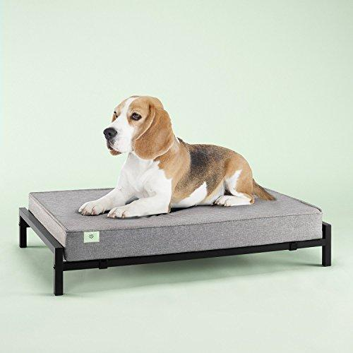 Zinus Mattress Set Pet Bed, Medium