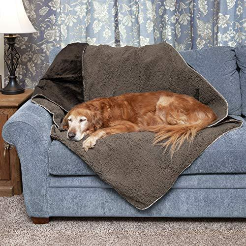 Furhaven Pet Throw Blanket   Snuggly & Warm Faux Lambswool & Terry Pet Throw Blanket, Espresso, Large