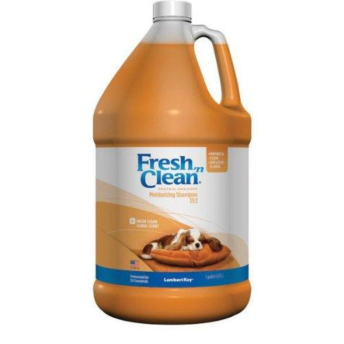 Lambert Kay Fresh N Clean Shampoo(Pack Of 1)