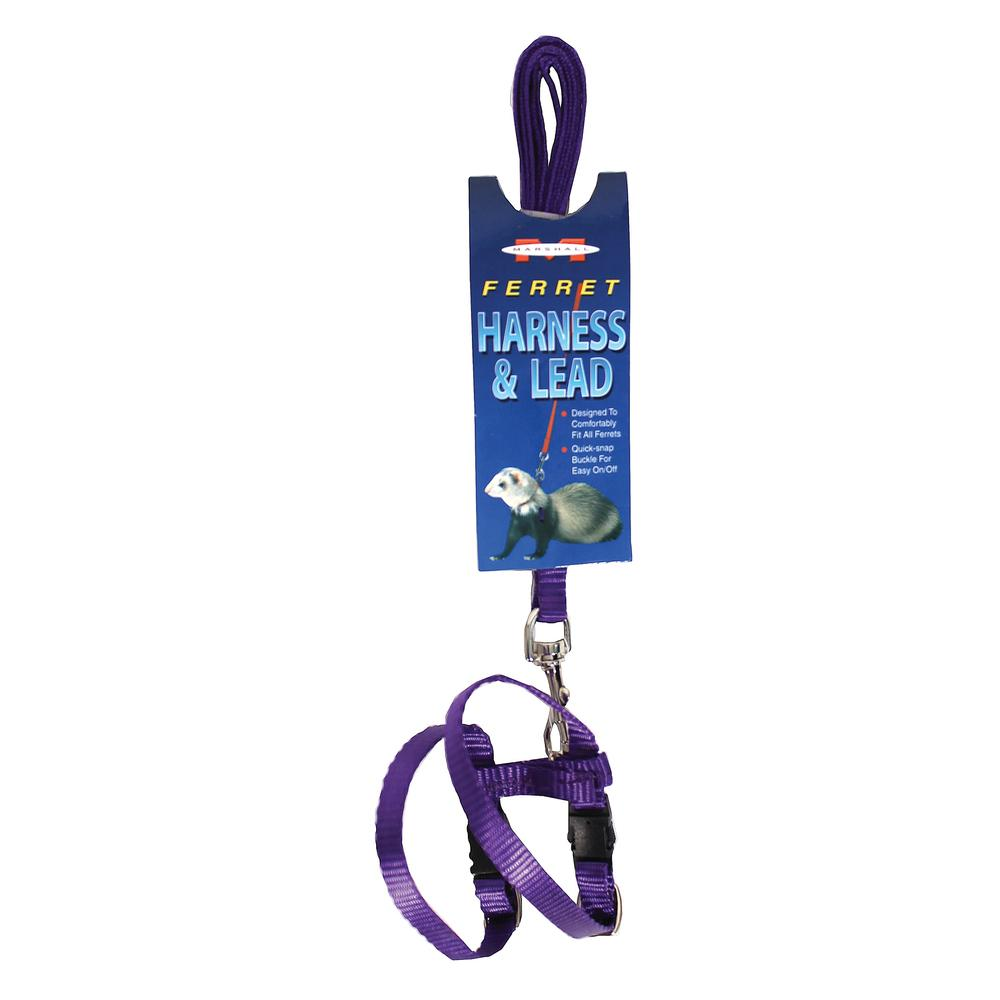 Marshall Pet Purple Ferret Harness And Lead 48 In 766501000931