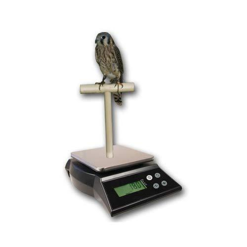 Zieis Digital Bird Scale   A42Ss-Nmtp   Wooden T Perch   Suction Cup   1.0 Gram Or 0.05 Ounce Accuracy   2000 Gram Or 70 Ounce Capacity   Stainless Steel Platform