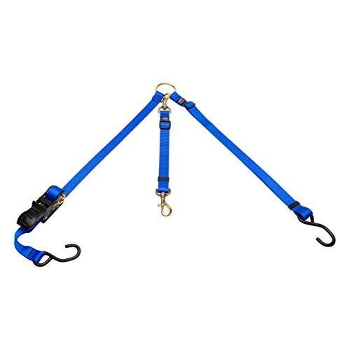 Cetacea Pet Truck Bed Tether With Ratchet Tightening Hardware, One Size, Blue